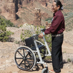 Folding Walker | Walker Wheelchair Combo | Walk'n'Chair